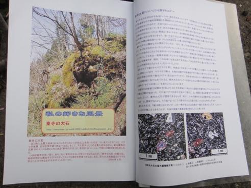 haruyokoi3.JPG