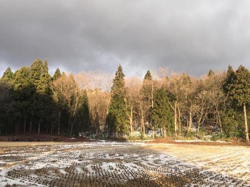 asahi180102.jpg