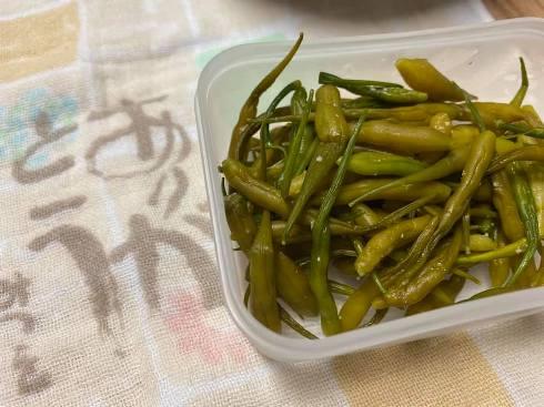daikonnnomi205021.jpg