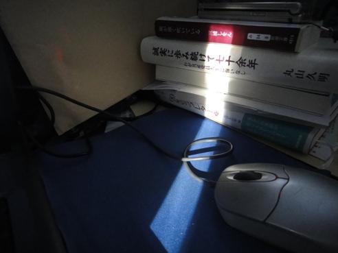 hikari121229.JPG