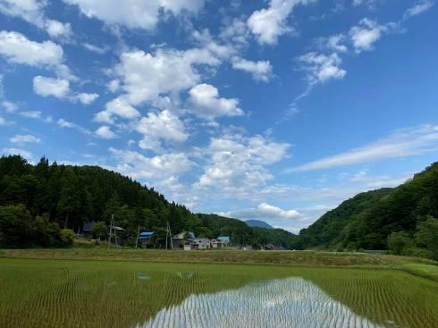 irikouzo200523.jpg