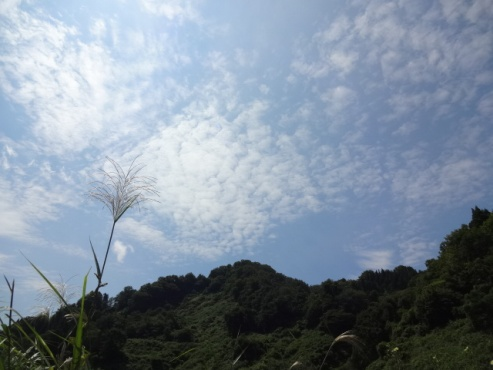 itayama130829.JPG