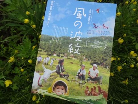 kazenohamonn160501.JPG