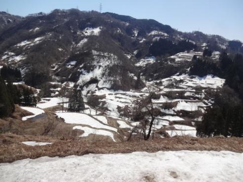 komugidaira140401.JPG