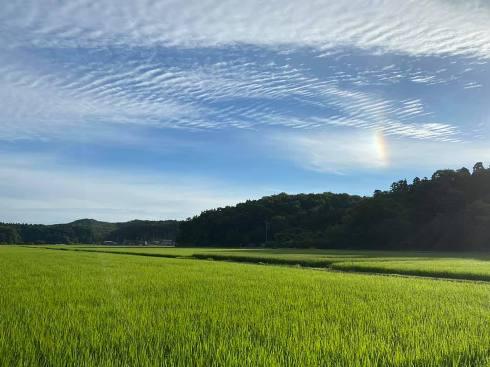 niji200724.jpg