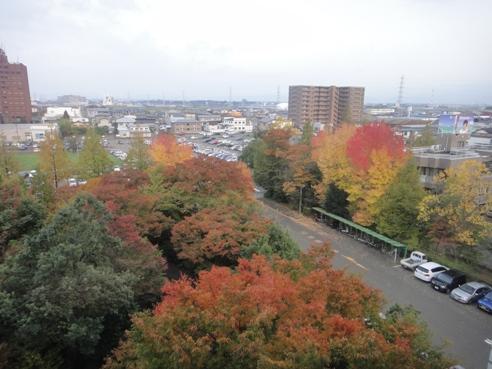 shiyakusyokouyou101108.JPG
