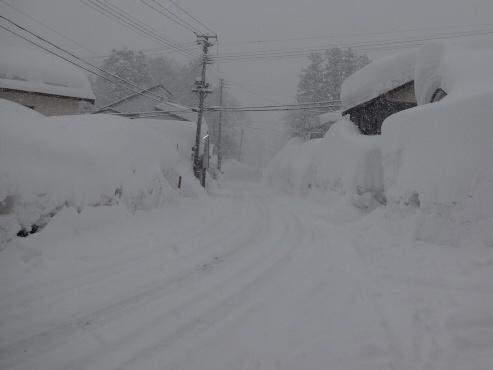 syoubunishi130223.JPG