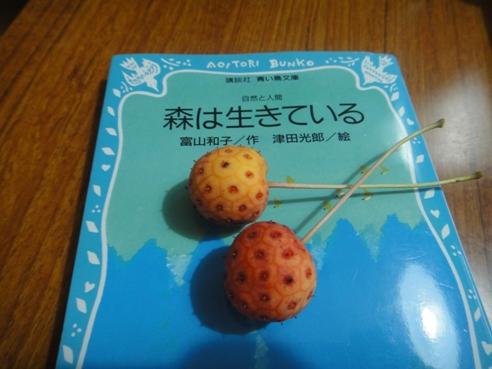 yamaboushi100920.JPG