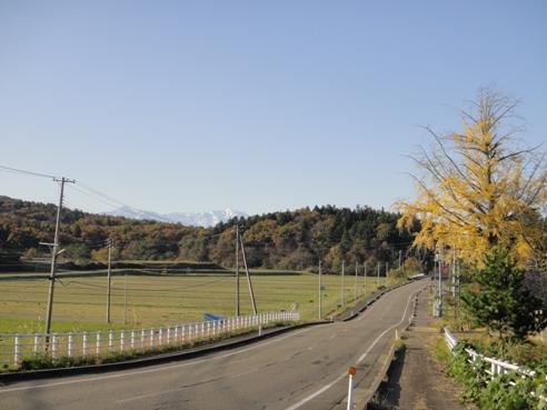 yamagata111123.JPG