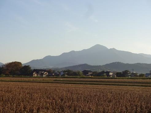 yoneyama%201410181.JPG