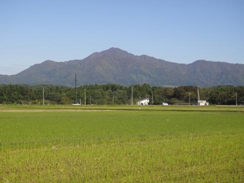 yoneyama101104.JPG