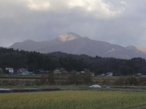 yoneyama101204.JPG