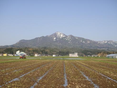 yoneyama120428.JPG