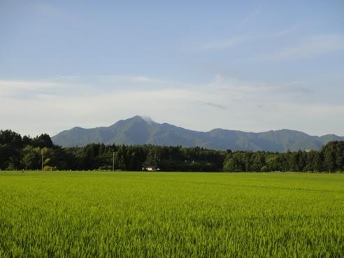 yoneyama120702.JPG