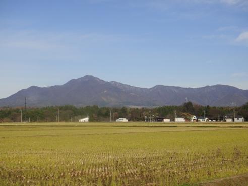 yoneyama121128.JPG