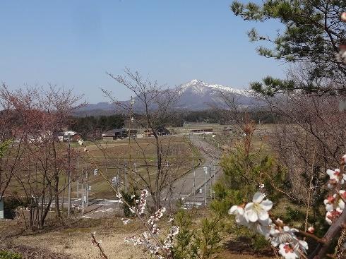 yoneyama140407.JPG
