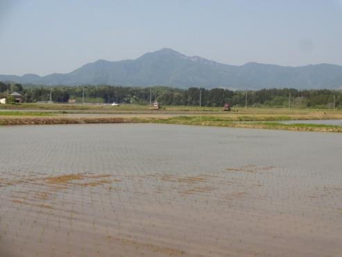 yoneyama140508.JPG