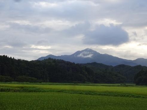 yoneyama1508241.JPG