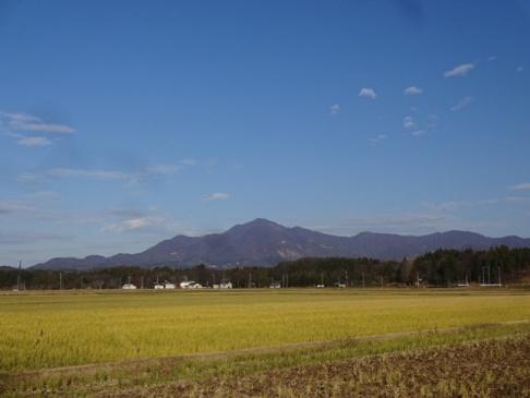 yoneyama1512151.JPG