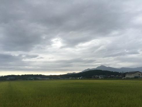 yoneyama160913.JPG