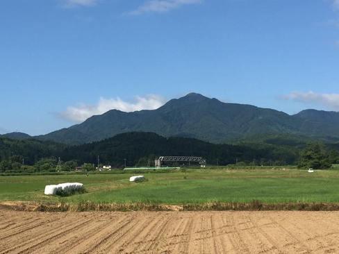 yoneyama170617.jpg