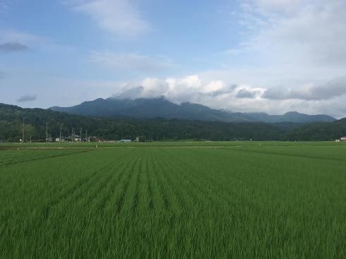 yoneyama170705.jpg
