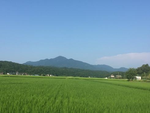 yoneyama170721.JPG