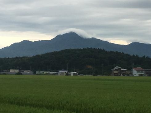yoneyama170815.JPG