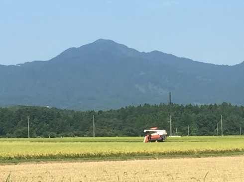 yoneyama170827.JPG