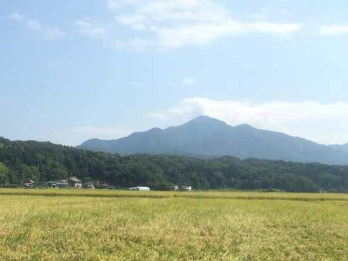 yoneyama190901.jpg