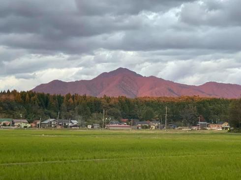 yoneyama191104.jpg