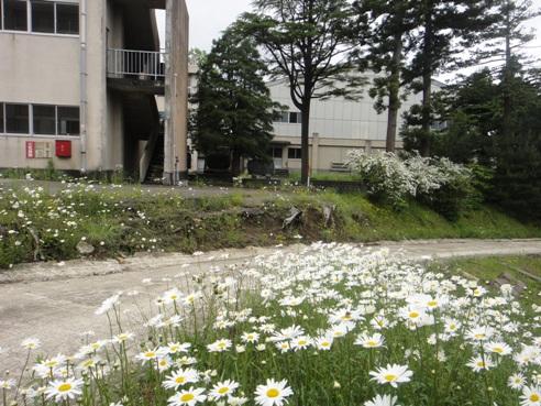 yoshikawakoukou100529.JPG