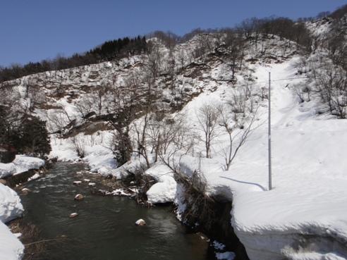 yukidoke120329.JPG