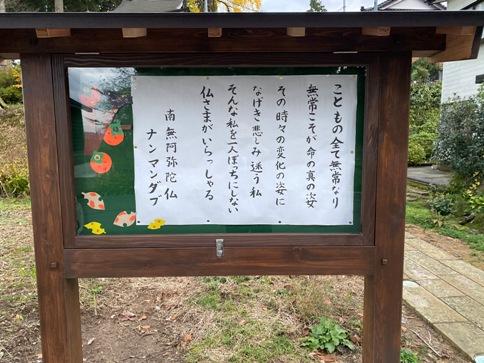 zenntyouji20111301.JPG